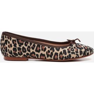 Ballerina's luipaard