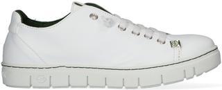 Witte Lage Sneakers Kraz