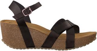 Zwarte Sandalen 20272