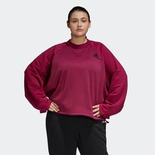Z.N.E. Athletics Sweatshirt (Grote Maat)